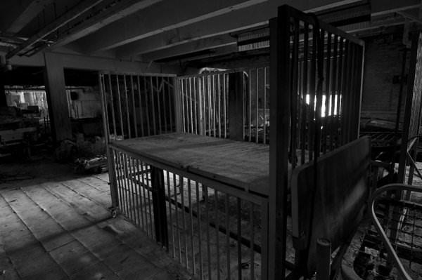 Adult Crib