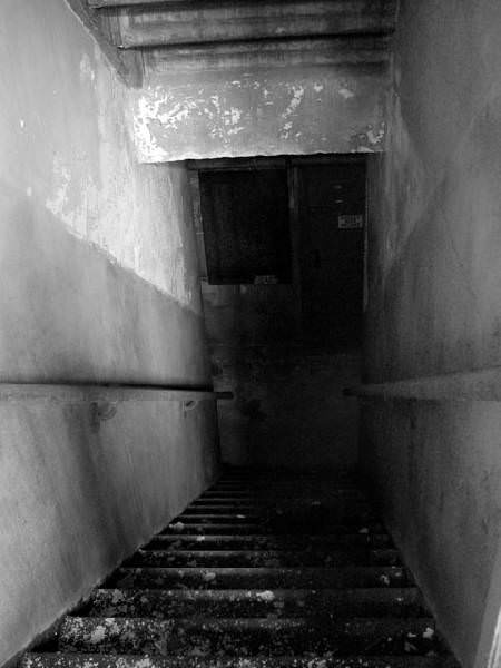Basement Stairs Photo Of The Abandoned Kings Park Psychiatric Center